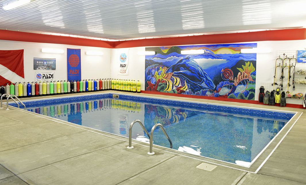 Aquatic World Pool